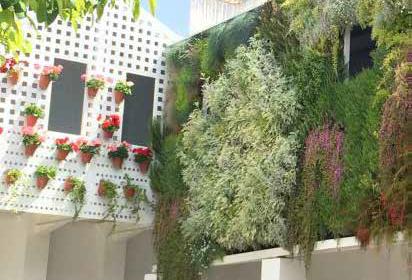 Biofilia en balcones o terrazas